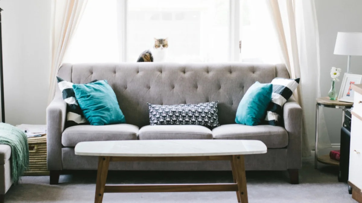 Best Furniture Maintenance Tips and Guidance