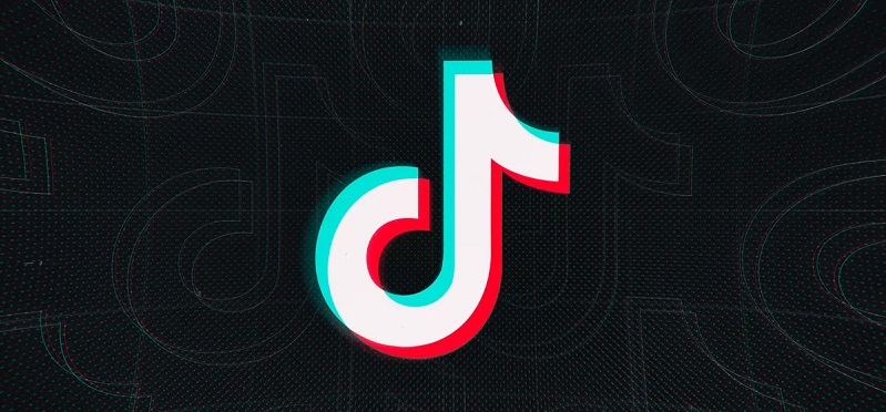 What is TikTok, and also just how to utilize it in an organization?