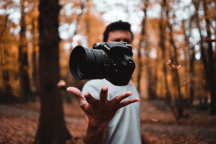 Wildlife Photography Courses and Career in India After 12th