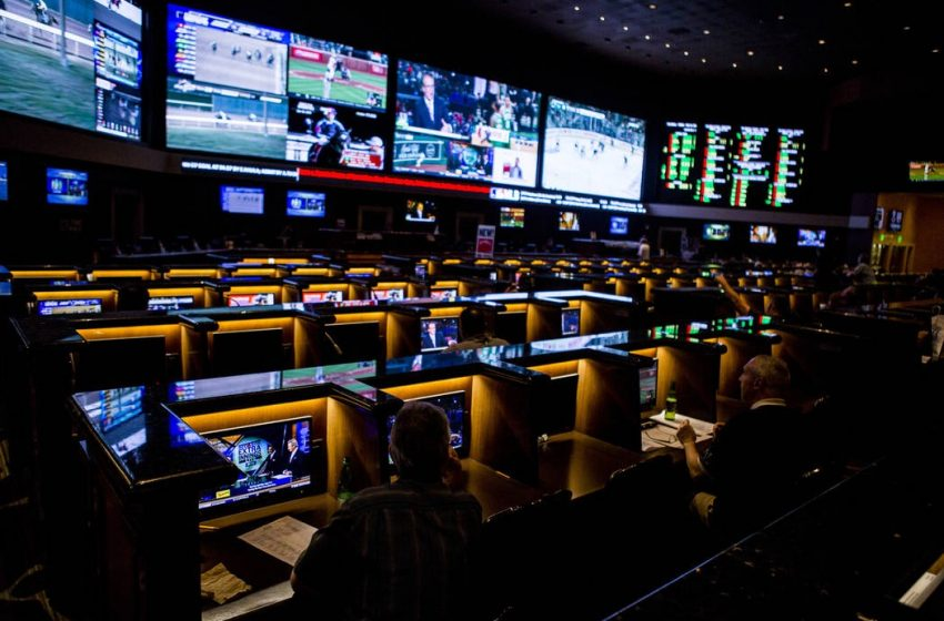 The Sport Betting Deals You Really Need Now