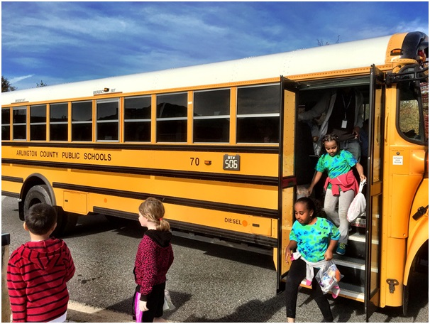 Fun-filled Ideas for your Next Field Trip