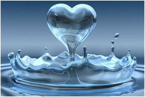 Big Berkey Water Filter Benefits
