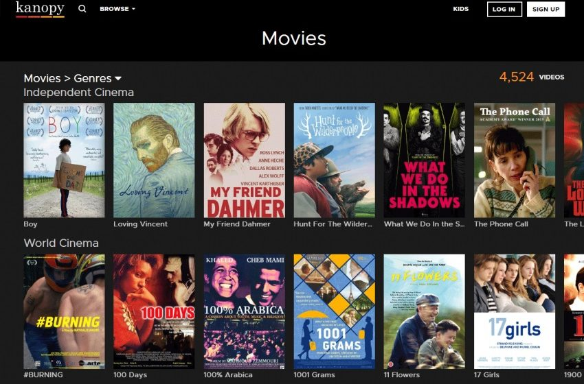 Download Movies Online-What You Need to Know: