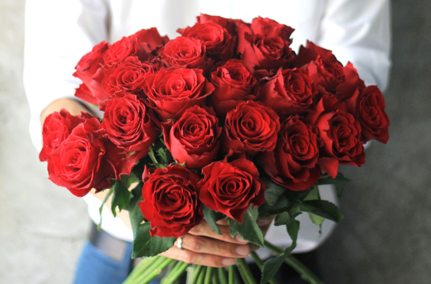 Do You Know Why Roses Are Popular as Gifts on Valentine's Day?