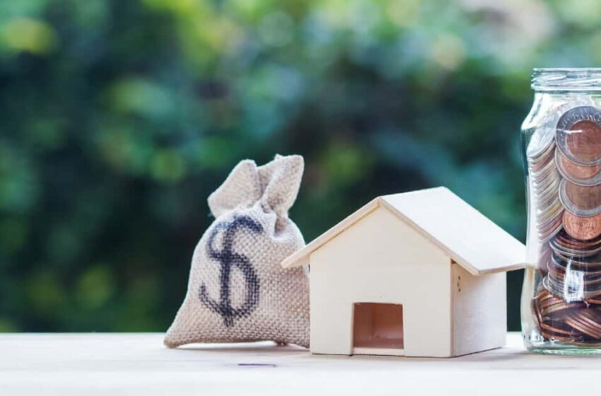 Looking for money lender? We will help you to find the best
