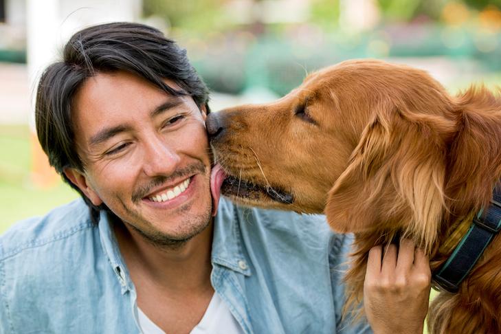 Pet Owner Advice