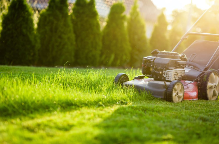Lawn Care Tips For A Healthy Summer Lawn