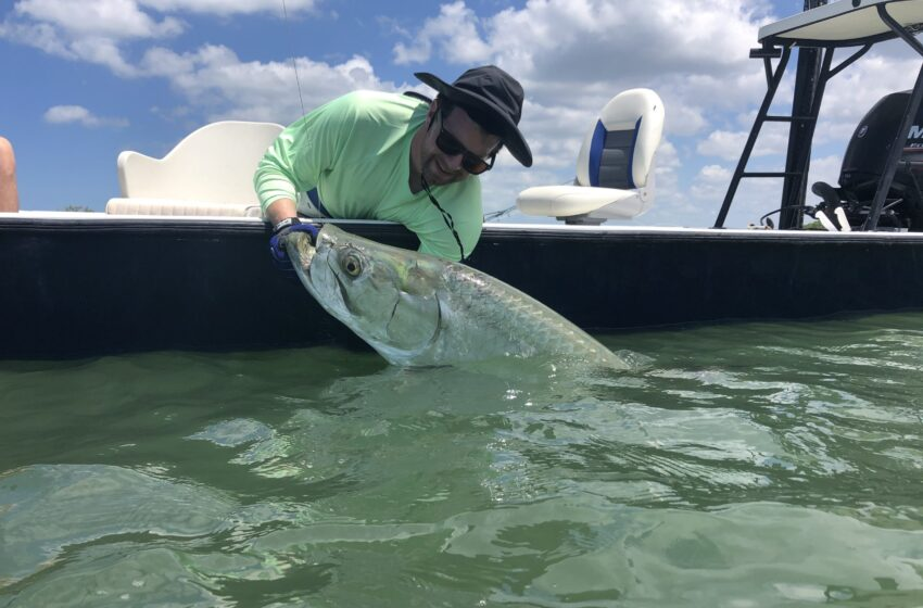 The Ultimate Guide About Marco Island Fishing Guide